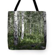 Forever Aspen Trees Tote Bag