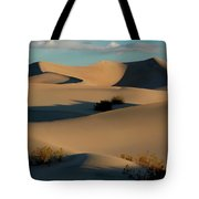 Form And Light At Death Valley Tote Bag