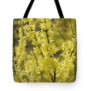 Forsythia In Full Bloom Tote Bag