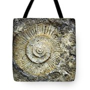 Fossil Geology Tote Bag