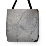 Fossilized Fern Tote Bag