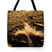 Found Feathers Tote Bag