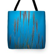 Fountain Grass In Blue Tote Bag