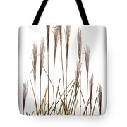 Fountain Grass In White Tote Bag by Steve Gadomski