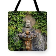 Fountain In The Walled Garden, Florence Tote Bag