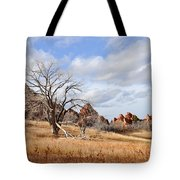 Fountain Valley Tote Bag