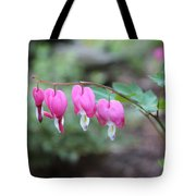 Four Bleeding Hearts Tote Bag