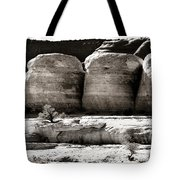 Four Boulders Tote Bag