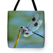 Four Spotted Pennant  Tote Bag