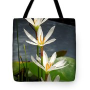 Four Tall Marsh Grass Blooms Tote Bag