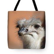 Fourth Quarter Letdown Tote Bag
