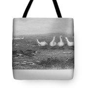 Fox & Geese, 19th Century Tote Bag