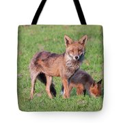 Fox And Baby Tote Bag