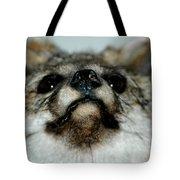 Foxy Eyes Tote Bag