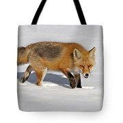 Foxy Lady Tote Bag