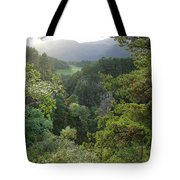 Foyers Valley Tote Bag