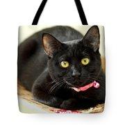 Fragile Mimi Tote Bag