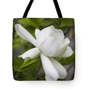 Fragrant White Gardenia Blossom Tote Bag