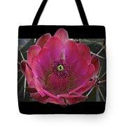 Framed Fuchsia Cactus Flower Tote Bag