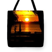 Framed Globes Tote Bag