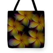 Frangipani Circle Of Color Tote Bag