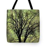 Freaky Tree 2 Tote Bag