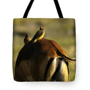 Free Ride Tote Bag