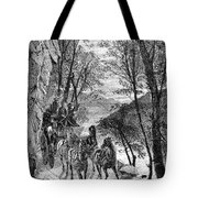 French Broad River, C1873 Tote Bag