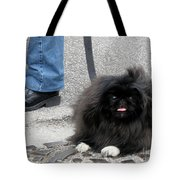 Frenchman And His Dog Tote Bag