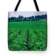 Fresh Cabbage Tote Bag
