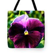 Fresh Face Pansy Tote Bag
