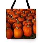 Fresh From The Farm Orange Pumpkins Tote Bag