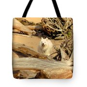 Friend Along The Way Tote Bag