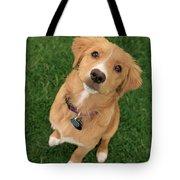 Friendly Dog Tote Bag