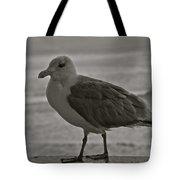 Friendly Gull Tote Bag