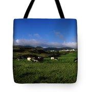 Friesian Cattle, Allihies, Co Cork Tote Bag