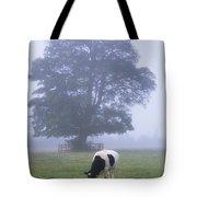 Friesian Cow, Ireland Tote Bag