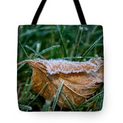 Fringed In Frost Tote Bag