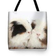 Frizzy Alpaca Guinea Pigs Tote Bag