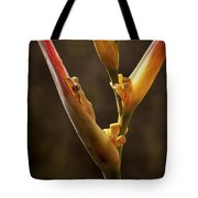 Frog And Heliconia Tote Bag