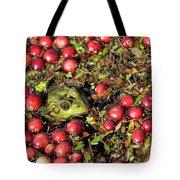 Frog Peaks Up Through Cranberries In Bog Tote Bag
