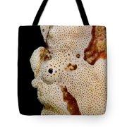 Frogfish Face Tote Bag