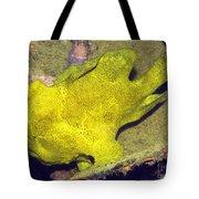Frogfish Tote Bag