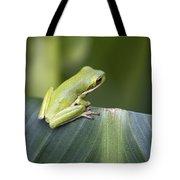 Froggie On A Leaf Tote Bag