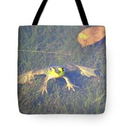 Froggie Sitting In The Water Tote Bag