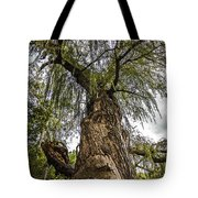 From The Ground Up Tote Bag