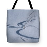 Frost Covered Grasses In A Snowy Tote Bag