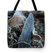 Frosted Feather Tote Bag