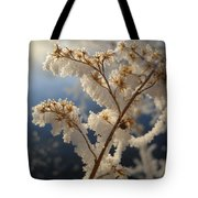 Frosty Dry Wood Aster Tote Bag