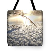 Frosty Ice At Sunrise Tote Bag